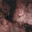 NGC 3372 Eta Carinae Nebula,                                David Wright