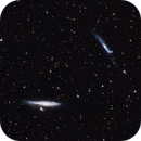 NGC 4631 (aka Whale Galaxy) and NGC 4656/NGC 4657 (aka Hockey Stick Galaxies or Crowbar Galaxy) in Canes Venatici,                                S. Stirling
