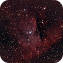 NGC 281 (Pacman),                                Tyler Jackson Welch