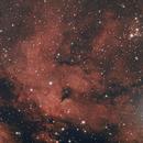 IC 1318-NGC 6910-Sadr,                                Craig Kensler