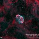 The Crescent  & Soap Bubble Nebulae - NGC 6888 & PNG 75.5-1.7   HOO,                                Paul Borchardt