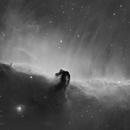 IC 434- Horsehead Nebula- Hydrogen,                                Matt Harbison