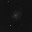 M101,                                Pat Darmody
