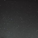 lizard constellation,                                Augusto