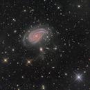 NGC 772,                                Miles Zhou
