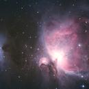 M42 - The Orion Nebula,                                Daniel Maly