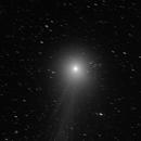 Cometa Lovejoy (C 2014 Q2),                                Alberto Pisabarro