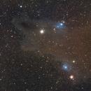 LDN 1235 - Dark Shark Nebula in Cepheus,                                Benny Colyn
