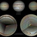 Jupiter full polar projection,                                Luis Farinos Puerto