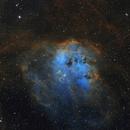 IC 410 (Tadpoles) in Auriga - SHO from E-EyE,                                Steve Milne