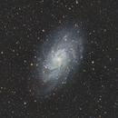 M33 - Triangulum Galaxy,                                Samara