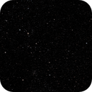 Starfield Magnificence,                                Daniel Erickson