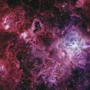 NGC 2070 - Tarantula Nebula,                                Renan