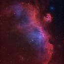 Backyard - IC 2177 - The Flying Seagull,                                  Min Xie