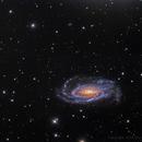 NGC 5033 HaLRGB,                                Eric Coles (coles44)