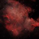NGC7000 (North America Nebula),                                Alain POYVRE