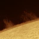 Solar prominence 2020.08.28,                                Alessandro Bianconi