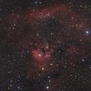 A Short NGC7822,                                Markus Bauer