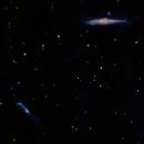 The Whale & Hockey Stick Galaxy,                                Tigi Kuttamperoor