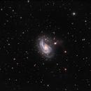 NGC 772,                                Rich Sornborger