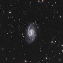NGC 3359,                                Mark