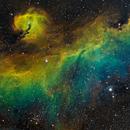 IC 2177 - Seagull Nebula RGBHSO,                                Ruediger