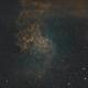 Flaming Star Nebula - 102mm APO,                                Andrew Burwell