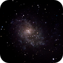 Pinwheel Galaxy M33,                                James R Potts