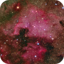 A carpet of stars: North America and Pelican nebulae - NGC7000, IC5070,                                Giulio