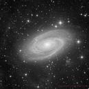M81 Luminance - Deep Sky West Remote Observatory,                                Deep Sky West (Lloyd)