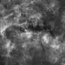 NGC 6914 and vdB 132 Region in Hα,                                Walter Koprolin