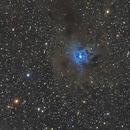 NGC 7023 The Iris Nebula and VDB 141 The Ghost Nebula,                                Elmiko