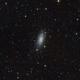 NGC 3621,                                Roberto Luiz Spen...