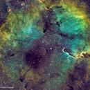 IC1396 with Elephant trump nebula,                                Daniel Lamothe