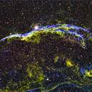 NGC 6960 The Western Veil Nebula,                                Dale A Chamberlain