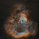 NGC 7822 - SHO,                                Frédéric Girard