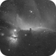horse head nebula in HA (with ASI1600mm pro),                                Marcus Wögerer
