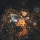 NGC6357 - War and Peace Nebula,                                Stefan Nebl