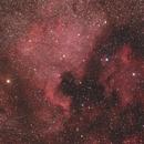 The North America and Pelican Nebulae,                                Gideon Golan
