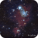 Christmas Tree Cluster / Cone Nebula (Broadband),                                Damien Cannane