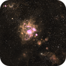 ngc1763,                                Barry Fialkov