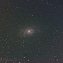 M33 - Triangulum,                                Paul Surowiec