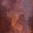 NGC7000 - North America Nebula,                                BirdrockAstro