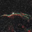 NGC 6960 - Western Veil Nebula,                                Evelyn Decker