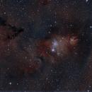 Christmas Tree Nebula,                                Chris