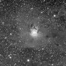 NGC7023 Iris Nebula,                                Marco Stra