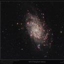 M33 in RGB,Ha,OIII & SII,                                Mike Oates