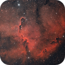 IC 1396,                                Michael Völker