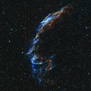 Veil Nebula (HOO),                                Mehdi Abed