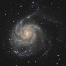 M101,                                Liangwt